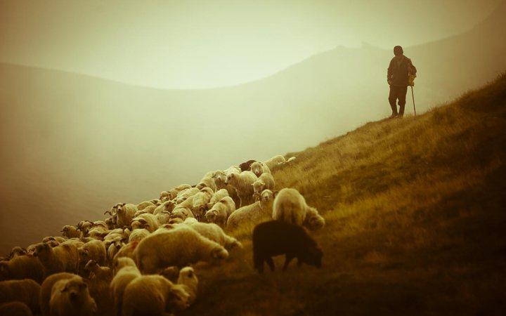 Giacomo-Leopardi-Canto-notturno-di-un-pastore-errante-dell'Asia